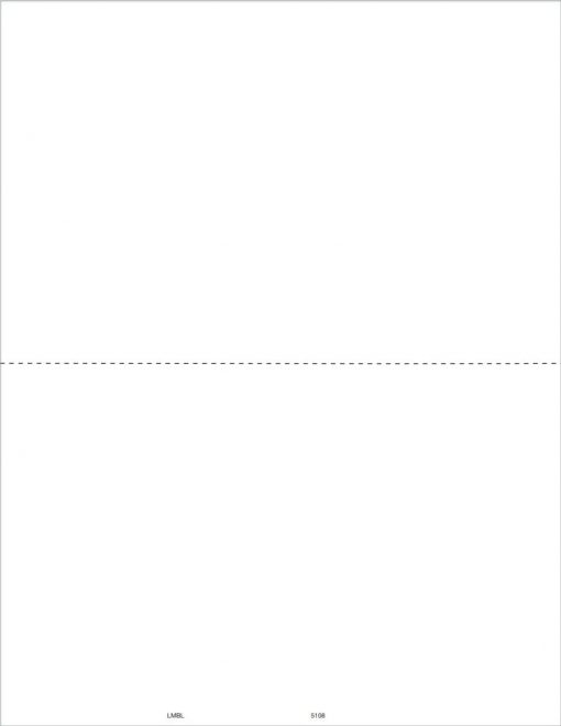 1099-MISC Blank Perforated Form Paper 2up - DiscountTaxForms.com