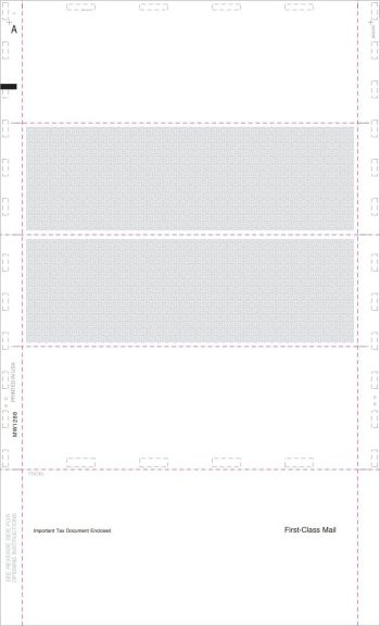 Blank Pressure Seal W2 4up Forms - DiscountTaxForms.com